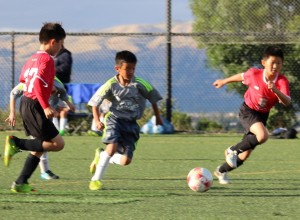 SanJoseFC_Open_Tryouts